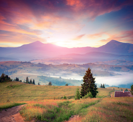 Colorful summer sunrise in the Carpathian mountains. Stock Photo