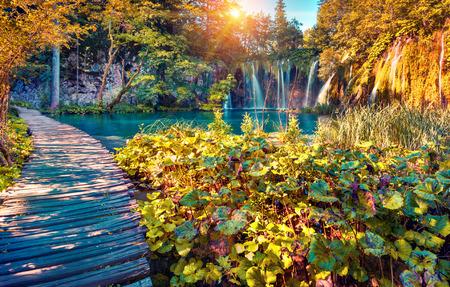 autumn park: Colorful autumn sunrise in the Plitvice Lakes National Park. Croatia. Europe. Lomography stylization and instagram toning effect. Stock Photo