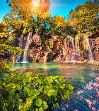 lomography: Colorful summer morning in the Plitvice Lakes National Park. Croatia. Europe. Lomography stylization and instagram toning effect.