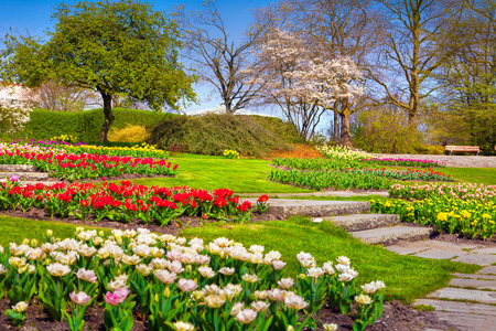 Sunny spring morning in the botanical garden of Essen town. Beautiful outdoor scenery in German, Europe. Фото со стока