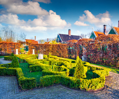 zaandam: Artistic green-yellow garden with small bushes. Tipical Dutch village Zaanstad in spring sunny day. Netherlands, Europe. Stock Photo