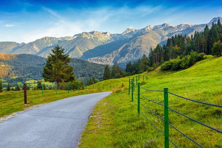 julian: Colorful summer morning in the Triglav national park, Slovenia, Julian Alps, Europe.
