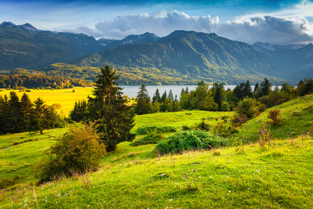 nature backgrounds: Colorful summer morning on the Bohinj lake in Triglav national park Slovenia, Julian Alps, Europe.