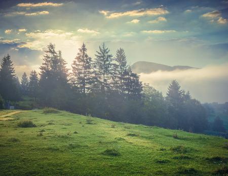 トリグラフ国立公園、ボーヒニ湖の近くで霧深い夏の朝。スロベニア、アルプス、ヨーロッパ。レトロなスタイル。