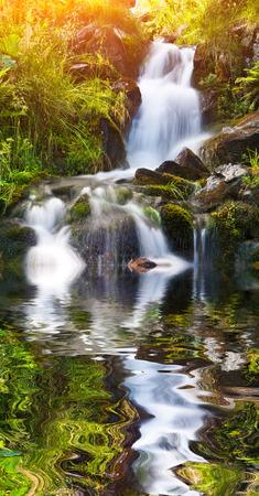 Kleine natuurlijke bron waterval, omgeven door mos en glas reflectie in zuiver water