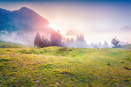 sunrise: Colorful sunrise in the foggy summer mountains. Triglav national park, Slovenia, Julian Alps, Europe.