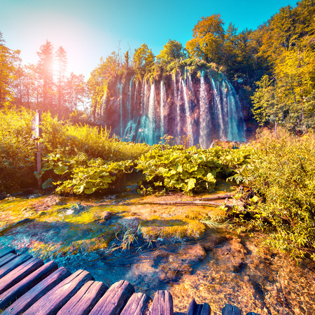lomography: Colorful summer morning in the Plitvice Lakes National Park. Croatia. Europe. Lomography stylization