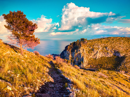 south italy: Colorful spring morning on the Zafferano cape, Sicily, Italy, Mediterranean sea, Europe.