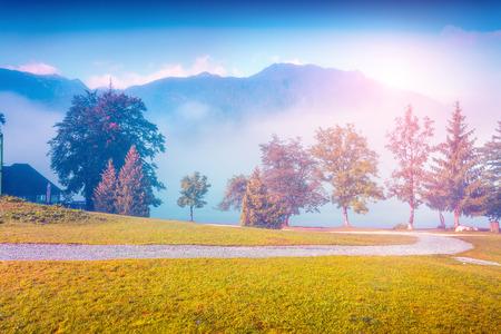 lomography: Foggy summer morning in the Stara Fuzina village park. Triglav national park, Slovenia, Julian Alps, Europe. Lomography stylization and instagram toning effect.