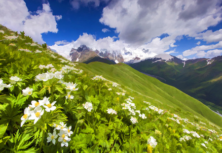Digital artwork in watercolor painting style. Fields of blossom flowers in the mountains.