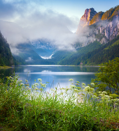 Foggy summer morning on the Vorderer Gosausee lake in the Austrian Alps. Austria, Europe.