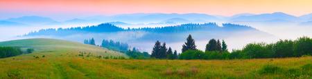 Panorama de la mañana de verano en las montañas de los Cárpatos de niebla. Borzhava cresta, Transcarpacia, Ucrania, Europa.