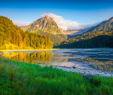 green river: Colorful summer morning on the incredibly beautiful Swiss lake Obersee, located near Nafels village. Alps, Switzerland, Europe.