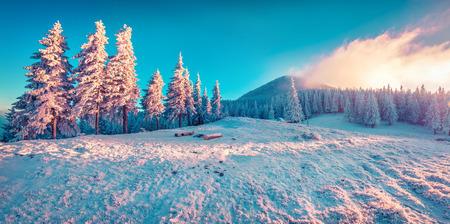 winter sunrise: Beautiful winter sunrise in the mountains. Instagram toning. Stock Photo