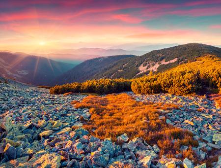 majestic: Colorful autumn sunrise in the Carpathian mountains. Gorgan ridge, Ukraine, Europe.  toning.