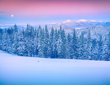 Rising moon above Gorgany ridge in winter Carpathian mountains.