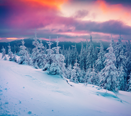 winter sunrise: Colorful winter sunrise in the mountains. Instagram toning.
