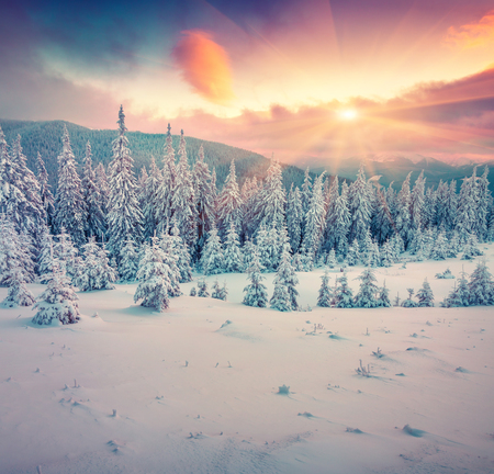 white winter: Colorful winter sunrise in the mountains. Instagram toning.