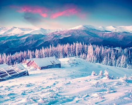 Bunte Wintermorgen in den Karpaten. Glade Pozharska, Karpaten, Ukraine, Europa.