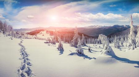 winter sunrise: Colorful winter sunrise in the Carpathian mountains. Stock Photo