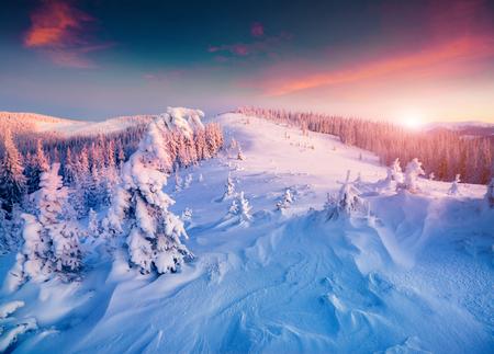 sunrise: Colorful winter sunrise in the Carpathian mountains.