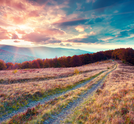 beautiful scenery: Fantastic colors autumn landscape in the Carpathian mountains.