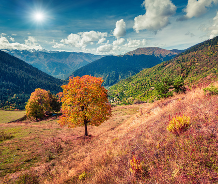 swanetia: Colorful autumn morning in the Caucasus mountains. Upper Svaneti, Georgia, Europe.