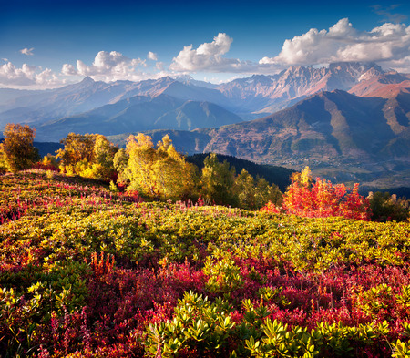 swanetia: Colorful autumn morning in the Caucasus mountains. Upper Svaneti, Georgia, Europe. October 2015.
