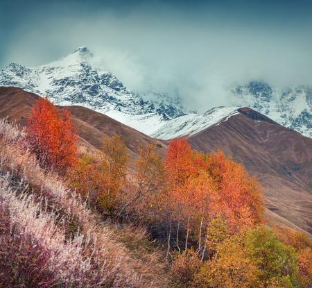 swanetia: Foggy autumn morning in the Caucasus mountain. Foot of Mt. Shkhara, Upper Svaneti, Georgia, Europe.   Stock Photo