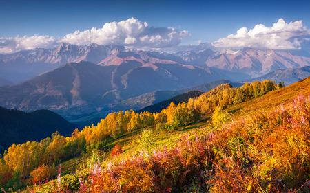 svan: Colorful autumn morning in the Caucasus mountains. Upper Svaneti, Georgia, Europe. October 2015.