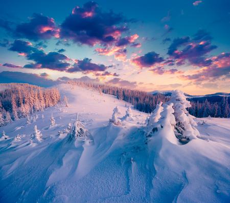 Colorful winter sunrise in the Carpathian mountains. Gorgany ridge, Ukraine, Europe.