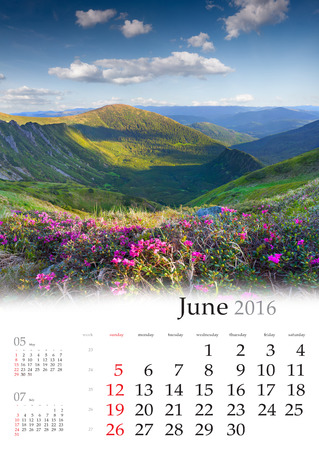 june: Calendar 2016. June. Colorful summer landscape in the mountains with fields of blossom flowers.