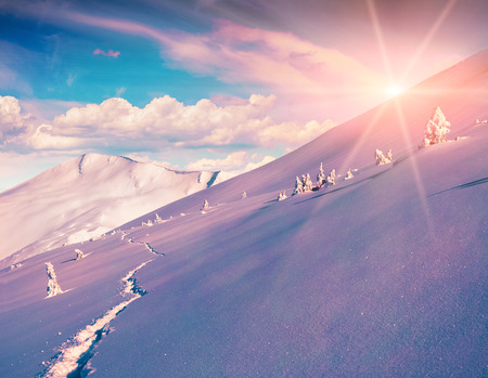 treck: Sunny winter morning in the mountains.