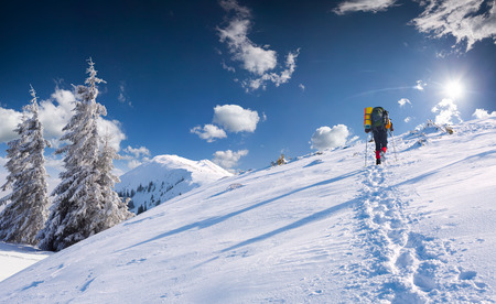 treck: Trip in the sunny winter morning on the top of mountain. Stock Photo