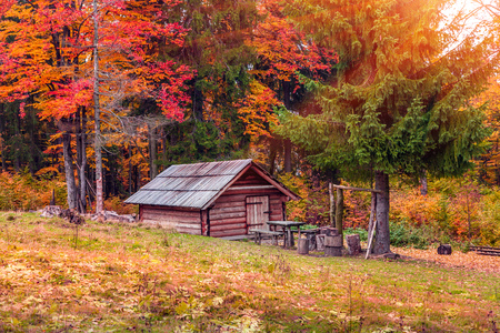 Foresters hut in the middle of autumn forest at sunrise Stock Photo