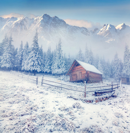 frozen winter: Old farm in the foggy winter mountains.