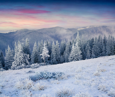 winter sunrise: Colorful winter sunrise in the mountains Stock Photo