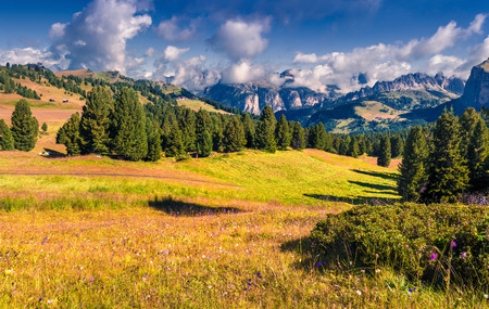 sella: Furchetta mountain range at sunny summer day day. View from Sella pass, Dolomites mountains, Italy