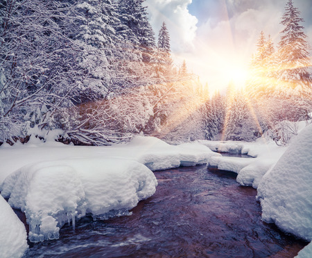 Colorful morning with dark river in the winter mountain forest.