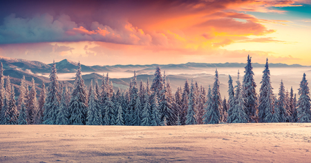 serene landscape: Colorful winter sunrise in the mountains.