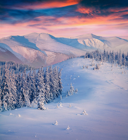 winter sunrise: Colorful winter sunrise in the mountains.