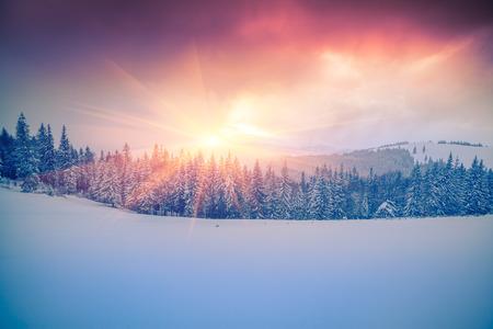 Kleurrijke winter scène in de Karpaten.