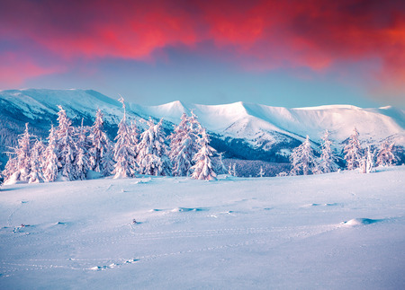 winter sunrise: Colorful winter scene in the snowy mountains. Stock Photo