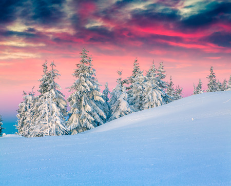 Kleurrijke winters tafereel in de besneeuwde bergen. Stockfoto