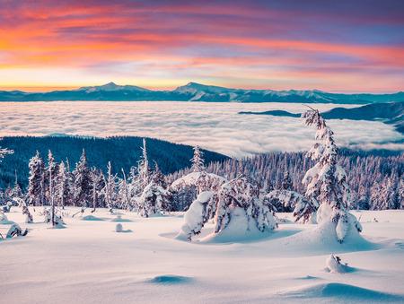 winter sunrise: Foggy winter sunrise in the snowy mountain.  Stock Photo