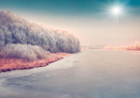 city scene: Sunny winter scene of the frozen pond in the city park.