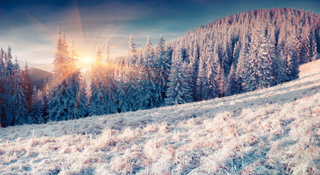 winter sunrise: Colorful winter sunrise in the misty mountans. Instagram toning. Stock Photo
