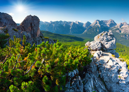 suny: Suny summer scene of the Cristallo group range in National Park Tre Cime di Lavaredo. Dolomites, South Tyrol. Location Auronzo, Italy, Europe.