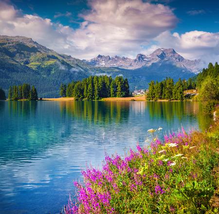 Sunne zomer scène op het Champferersee meer. Silvaplana dorp in de ochtendmist. Alpen, Zwitserland, Europa.
