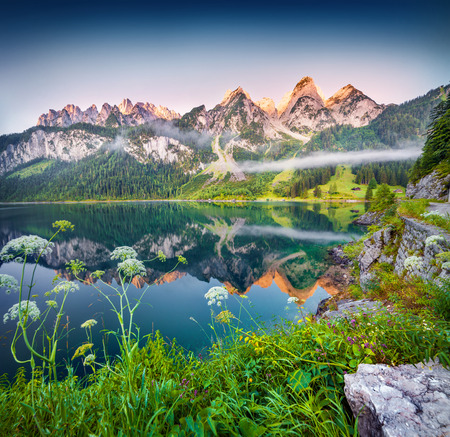 peaceful: Misty summer morning on the Vorderer Gosausee lake in the Austrian Alps. Austria, Europe.